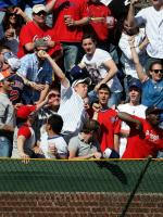 Cubs fan throws back a home run ball hit by the Cardinals.jpg