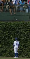 Alfonso Soriano watches as fans try to reach for a home run ball at Wrigley Field.JPG